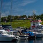 Bilde fra havnedagen 2014