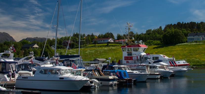 Bilde fra havnedagen i fjor.
